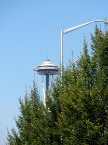 Screenplays vs Novels in Seattle